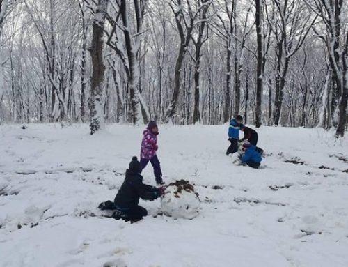 Remember – Bătaie cu zăpada 2015